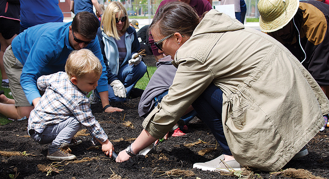 A child helps plant a tree.