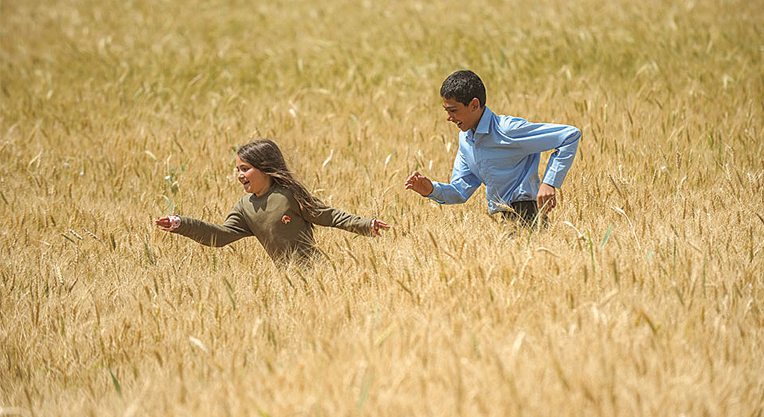 Children running through wheat field
